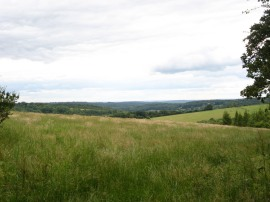 View nr Studdridge Farm