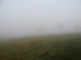 Fog on the Dunstable Downs
