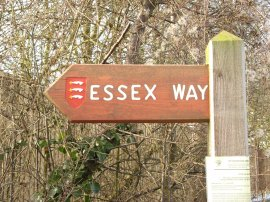 Essex Way Signpost