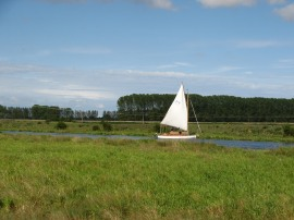 Sail boat on the river