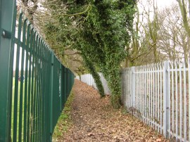 The path besides Eltham College Playing Fields