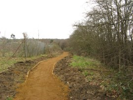 New section of path leaving Chinbrook Meadows