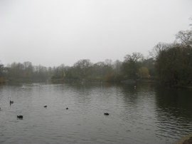 Lower Lake, Crystal Palace Park