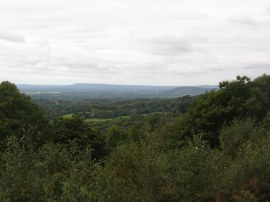 View from Holmbury Hill