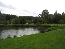 Church Pond, Hascombe