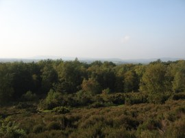 View from Hambledon Common