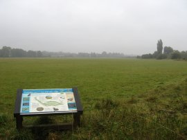 View over Hunsdon Mead