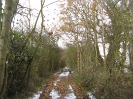 Byway from Bakers End