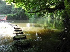 Boxhill Stepping Stones