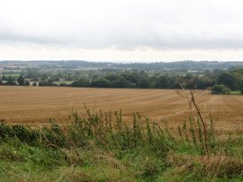 View towards Lenham