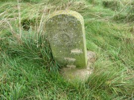 North Downs Way Milestone