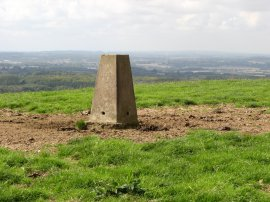 Trig Point, Brabourne Downs