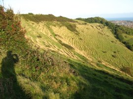 North Downs nr Folkestone