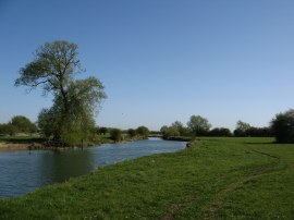 Thames between Cricklade and Castle Eaton