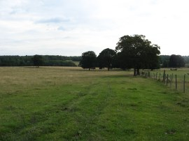 Fields nr Boxley