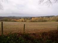 Countryside nr Little Berkhamsted