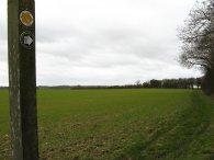 Field, nr Roe Green