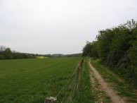 Path towards Stonesley Wood