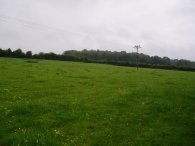 Field, Great Gaddesden