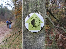 Landscape Trail Way Marker