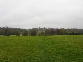 Fields nr Cuckfield Lane