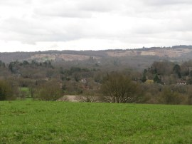 View towards Ashdown Forest