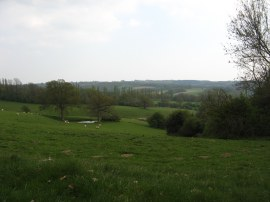 View from Tidymotts Lane