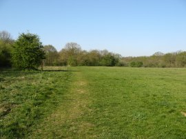 Jubilee Country Park, Petts Wood