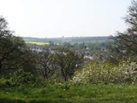View from Hayes Common