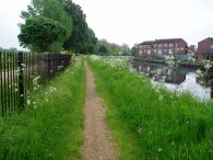 Path besides Hackney Marshes