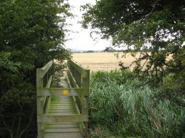 A slightly overgrown footbridge