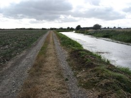 Royal Military Canal, nr Ruckinge