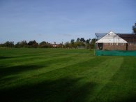 Cricket Pitch, Bell Common