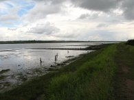 Strood Channel