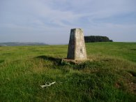 Tolsford Hill Trig Point