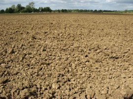 Another ploughed field