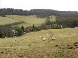 Stour Valley Walk nr Pope Street