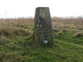 Trig Point, Monkhams Hall