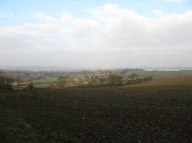 View from Galleyhill Wood