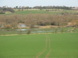Stour Valley, nr Fordwich