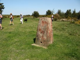 Camp Hill Clump Trig Point