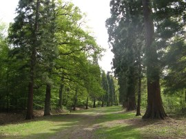 Langley Park Country Park