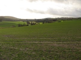 Darent Valley