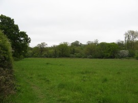 Totteridge Fields Nature Reserve