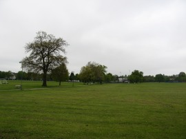 Barnet Playing Fields