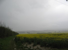 View towards the Downs