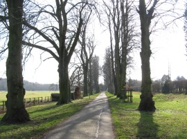 Driveway from Munden House